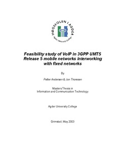 Feasibility study of VoIP in 3GPP UMTS release 5